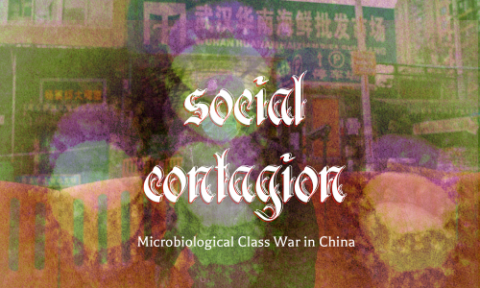 Social Contagion: Microbiological Class War in China