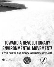 Toward a Revolutionary Environmental Movement