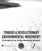 Toward a Revolutionary Environmental Movement